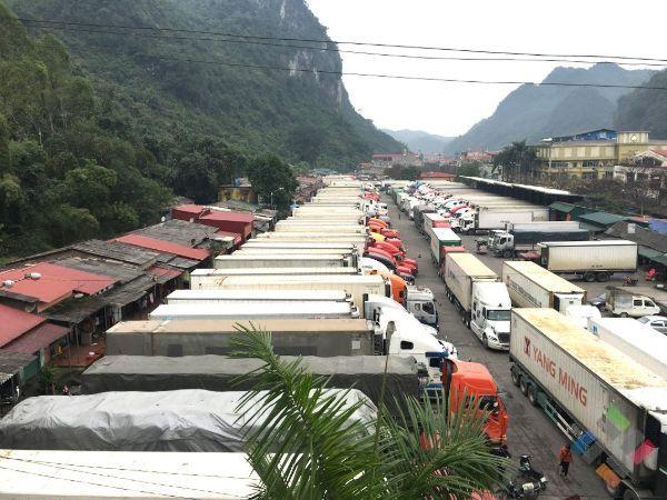Những xe container vận chuyển hàng đang đặt ở bãi